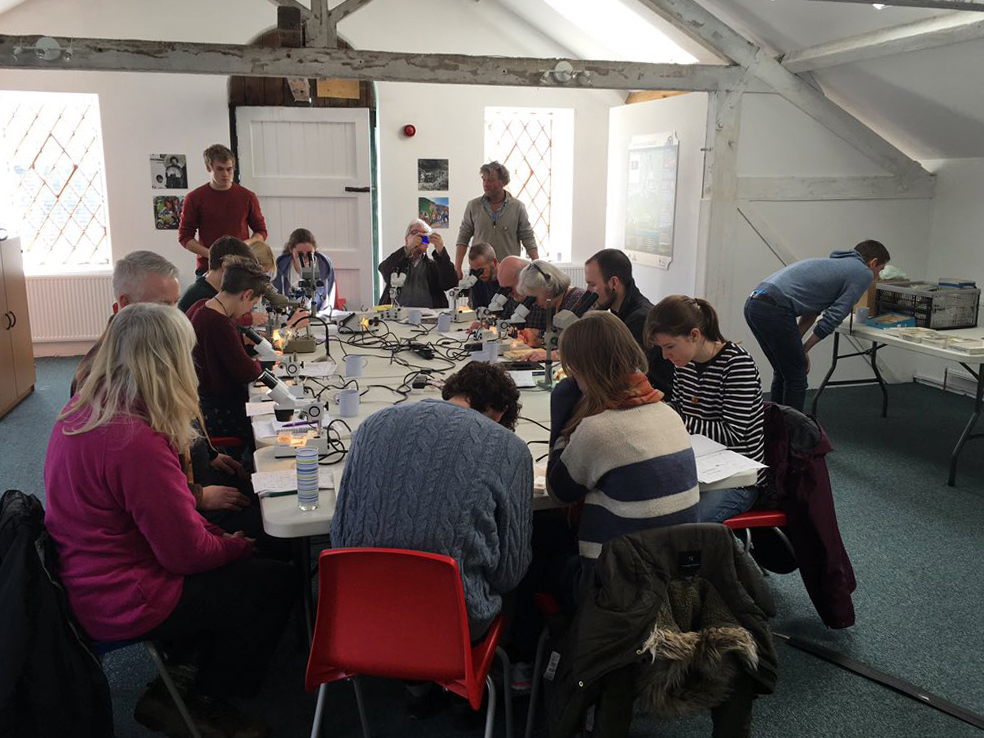 Mammal Bones Identification Workshop at Elsecar Heritage Centre, February 2016.